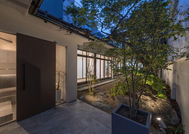 新しい庭.jpg
