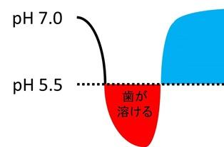 歯の臨界pH.jpg