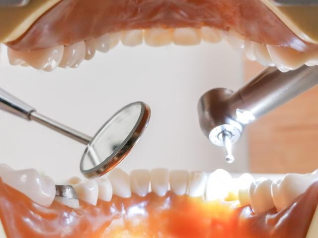 dental check1218.jpg